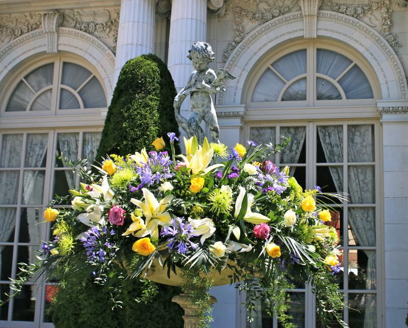 Newport Flower Show