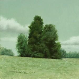 Cluster - Vince Natale
