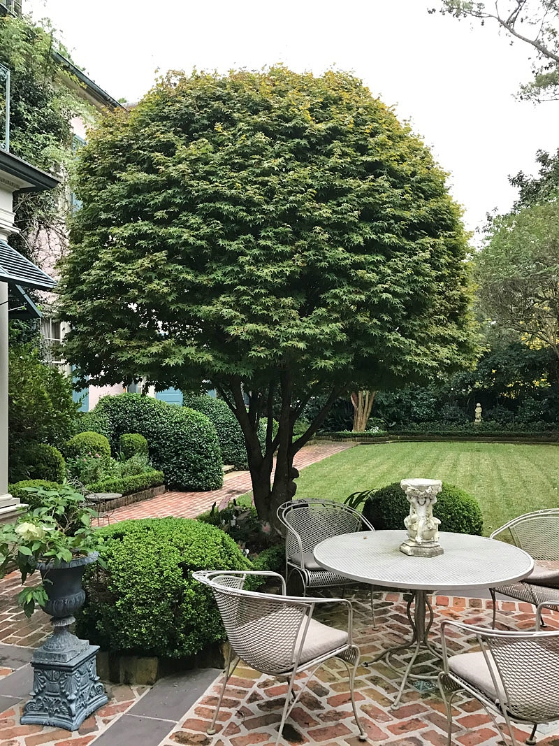 Introduce Water Into The Garden; The Sound And Tranquility It Imparts Will  Soon Become One Of Your Favorite Features. New Orleans Designer René  Fransen ...