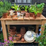 The Making of a Mini Vegetable Garden