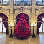 """""""O Christmas Tree, O Christmas Tree…"""""""