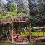 Inspiring Garden Design: An Olmsted Japanese Garden