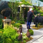 My London Trilogy – Part I: The Chelsea Flower Show