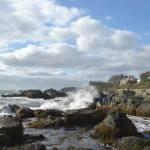 Newport Landscapes – A Cultural View