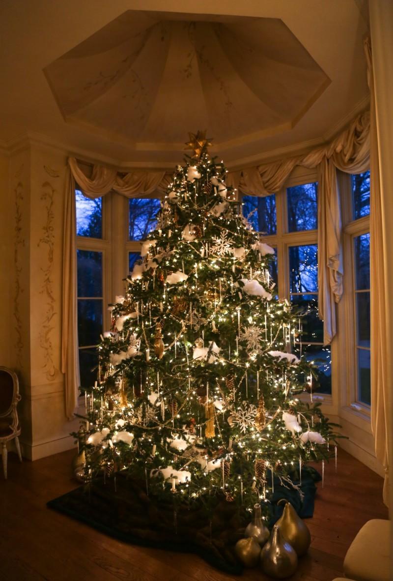 Bettie Pardee Christmas 2015-2