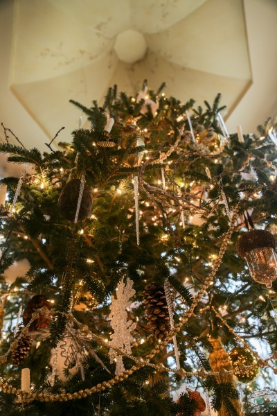 O Christmas Tree: Dressed for the Occasion