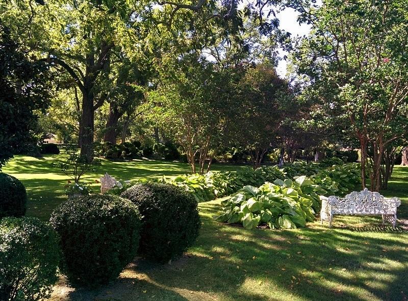 Garden 306