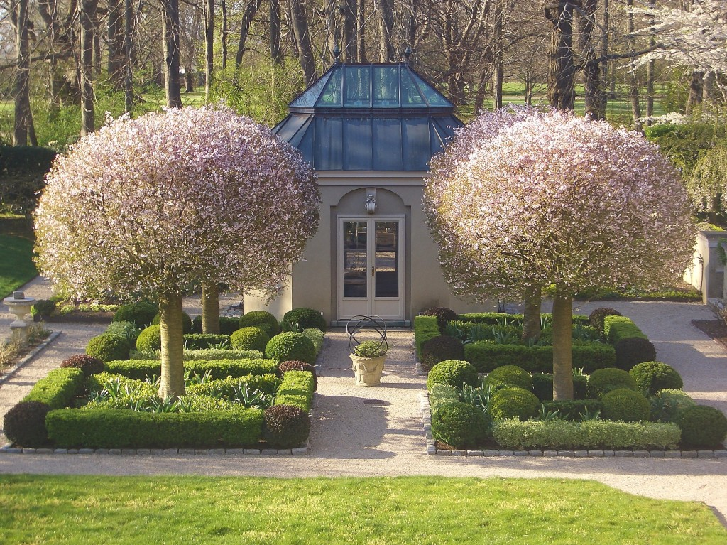 Euonymus An Overlooked Garden Design Asset Private Newport