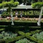 An Intriguing Knot Garden, Newport Style