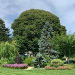 Sonnenhof: The Evolution of a Garden